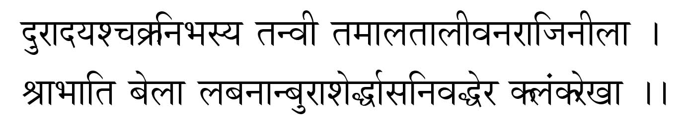 559 Santi P  Chowdhury, The Bengali traveller